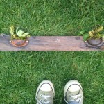 Drawer handle succulent planter