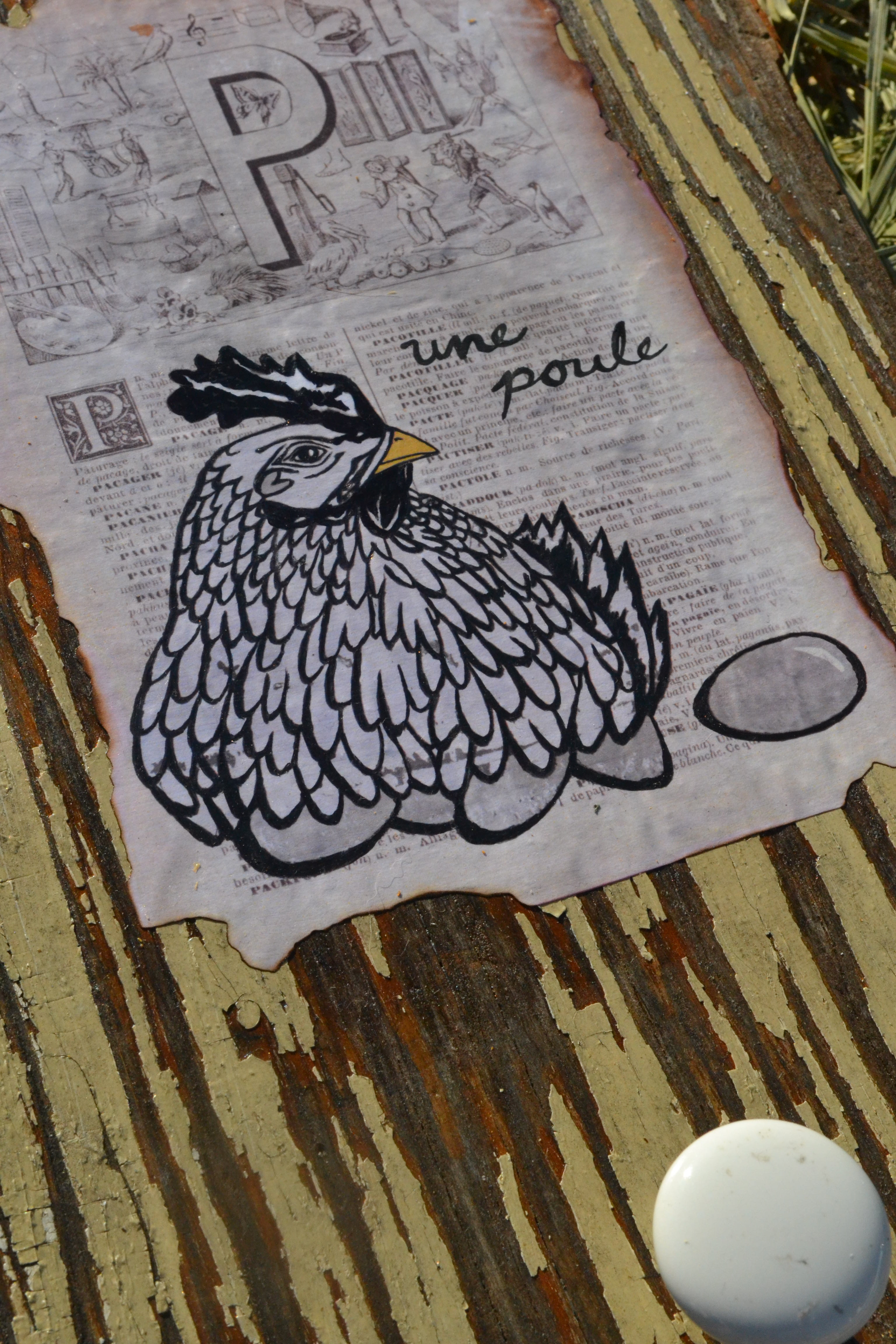 P is for Poule hanger