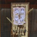 Chicks and Test Tubes flower holder
