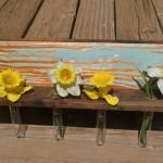Test tube flower holder (4)